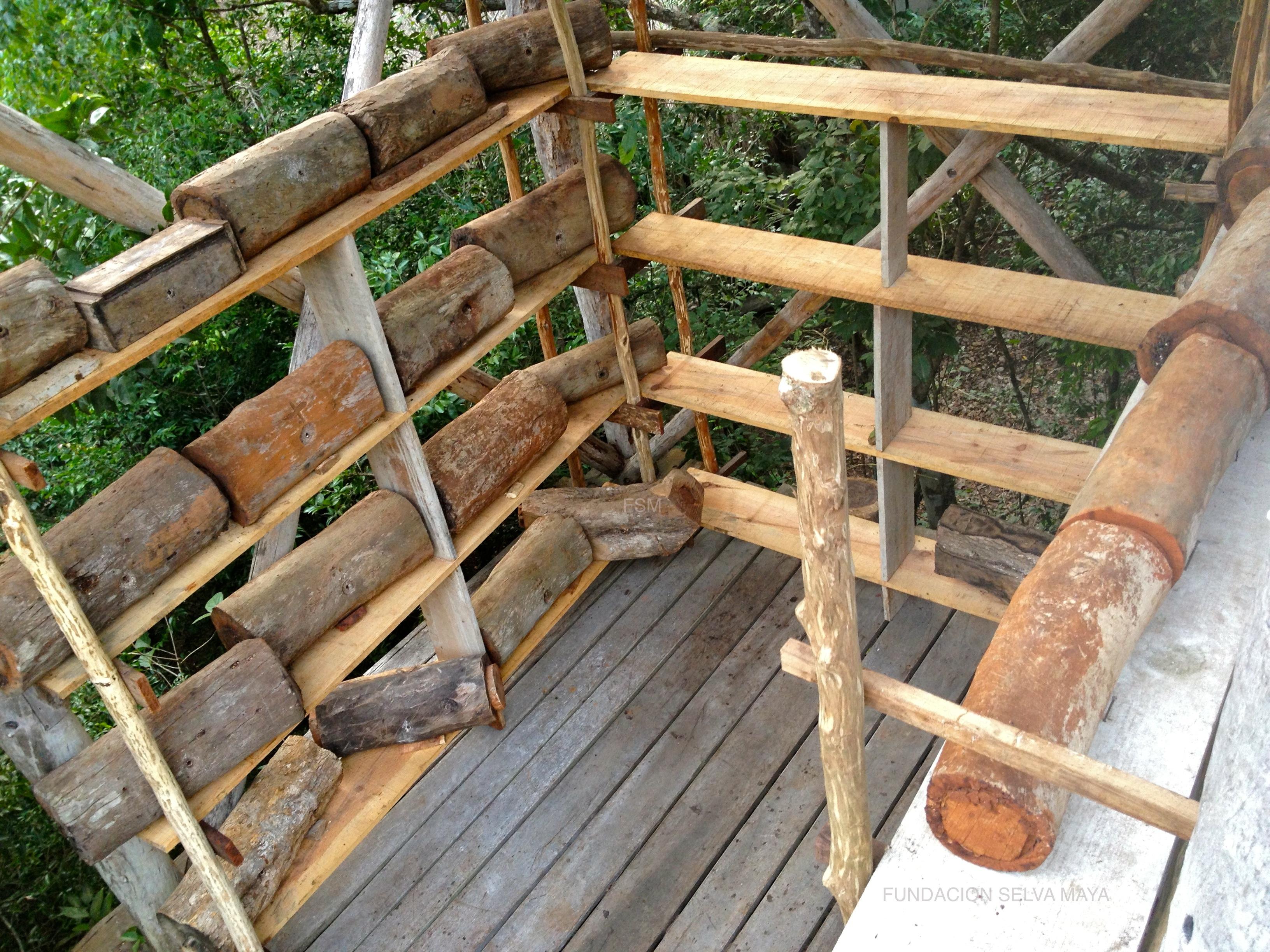 Meliponas Fundacion Selva Maya