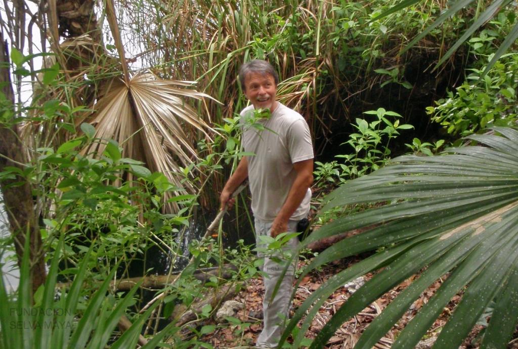 Manuel Orvañanos Urrutia, Director de FSM
